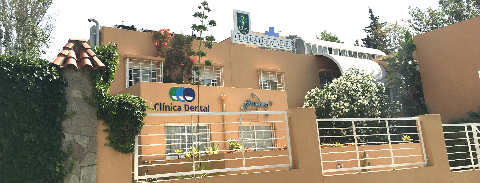 stamariadental-slide-03